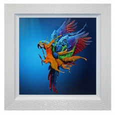 Flying Colours Framed Liquid Art Print