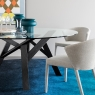 Tables Calligaris Jungle Dining Table