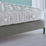 Devonshire Mattress 2