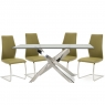 Anguilla Dining Table and 4 Olive Chairs 2