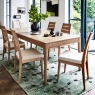 Ercol Romana Dining Table and 6 Chairs 2